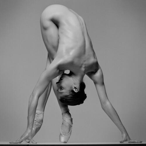 dance_study_shannon_chain